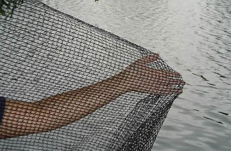 A hand is pushing the knitted pond netting, which is on the side of the fish pond.