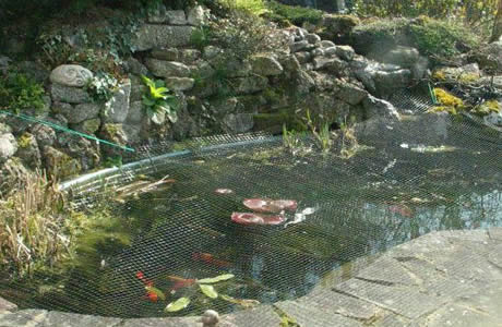 Plastic pond netting for ponds and water gardens for Plastic garden fish ponds