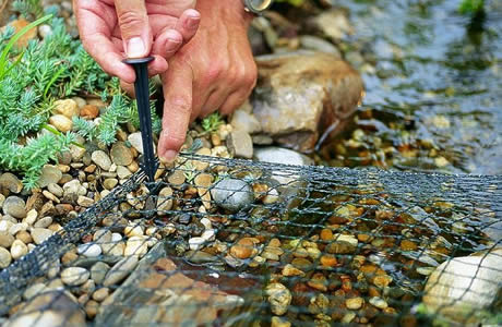 A man is fixing the pond netting to the brook bank with the plastic staple.